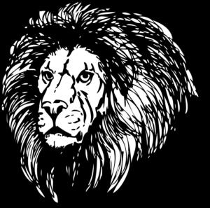 etsy shop shoutout roar package